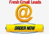Sell 100 USA Male Targeted Real Email Leads