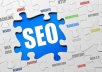 Provide White Hat Monthly SEO Services To Rank On First Page