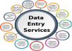 any type of data entry 2 hour  for $10