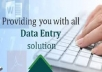 do data entry, data analysis, data mining and data an... for $10