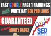will Rank You First In 30 Days Using 2018 Best SEO Service