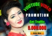 Build Viral Youtube Promotion Fast