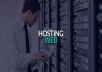 provide hosting service for one year for $30