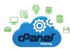 {HOT} Get .com domain + unlimited cpanel hosting + fr... for $25