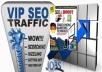 Organic & Targeted Traffic Service (VIP SEO Boost)
