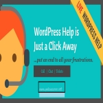 Help With Anything Related To Wordpress Any 1 Tasks