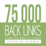 75 000 blog comment backlinks from SCRAPEBOX blast