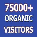 Real 75000 Organic Targeted Worldwide Visitors Traffic to Website