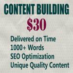 write 1000+ words articles of unique SEO optimized content