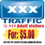 Promote Your Websites 15 000 Real Visitors Guaranteed