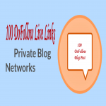 100 DoFollow Permanent Live Links Private Blog Network SEO Services