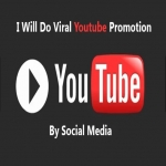 Manage Viral Youtube Promotion