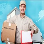 Alpha Courier & Cargo Management System