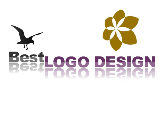 I wii design UNIQUE logo for your business/ product of personnal