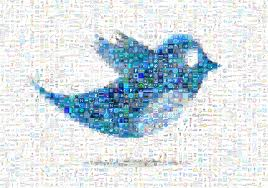 I will give you 100 pr1+ wiki contextual backlinks and give me 15 twitter accounts