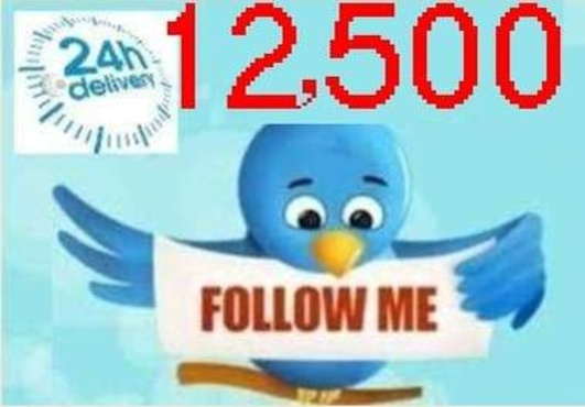 I NEED 10.000 TWITTER FOLLOWERS [NO DROPS] in less than 24h for $5