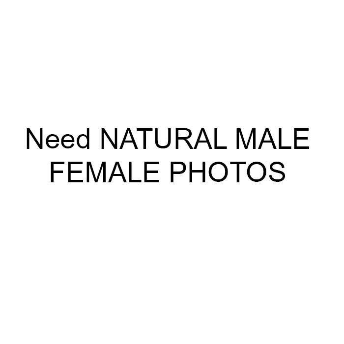 I Need A Fake Profile Picture