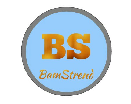 Need Strong 50 Pa And 50 Da Backlink To Rank New Domain Bamstrend.com.ng