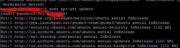 I need someone to help me with my Ubuntu 16.04 VPS