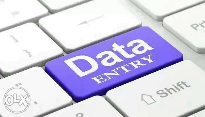 Basic Data Entry Job Max $6
