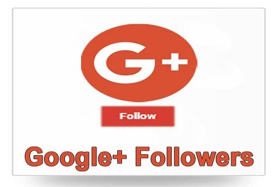 e7e0edc2ae50 USA Google plus Follower 1k non drop  Job for  1 by romanrings ...